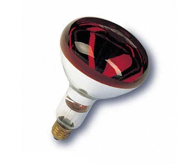 Rotlichtersatzlampe - für BELA Rotlichtstrahler, 250 Watt.